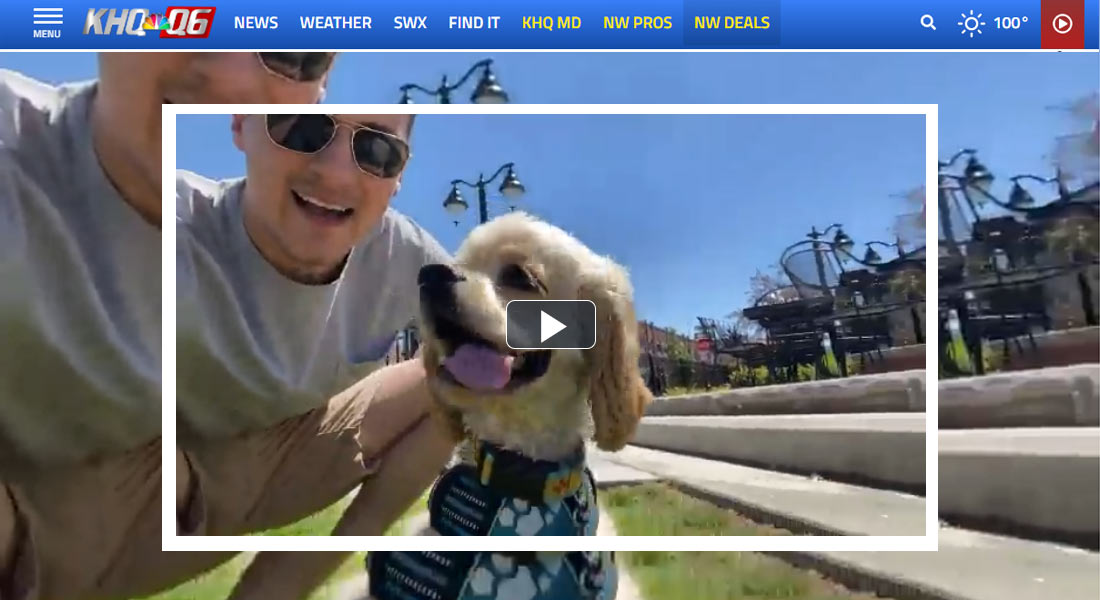 Screen grab of image from video - pet owner with dog.